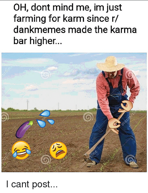 Reddit, Karma, and Farming: OH, dont mind me, im just  farming for karm since r/  dankmemes made the karma  bar higher.
