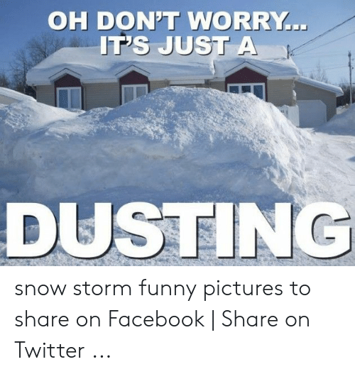 Funny Snow Memes: OH DON'T WORRY  IT's JuST A  DUSTING snow storm funny pictures to share on Facebook | Share on Twitter ...