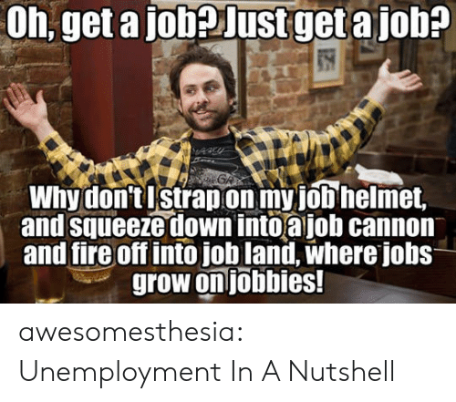 helmet: Oh, get a jobeJustget a job?  GA  Why don'tIstrapon my job helmet,  and squeeze down into ajob cannon  and fire off intojob land, where jobs  grow on jobbies! awesomesthesia:  Unemployment In A Nutshell