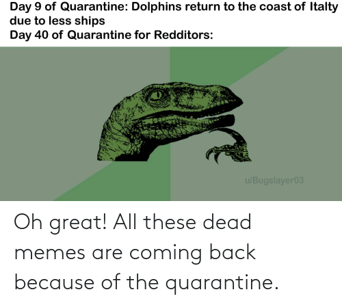 Memes Are Coming: Oh great! All these dead memes are coming back because of the quarantine.