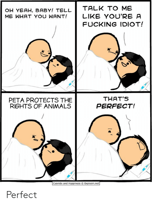 Yeah Baby: OH YEAH, BABY! TELL  ME WHAT YOU WANT!  TALK TO ME  LIKE YOU'RE A  FUCKING IDIOT!  PETA PROTECTS THE  RIGHTS OF ANIMALS  THAT'S  PERFECT!  Cyanide and Happiness © Explosm.net Perfect