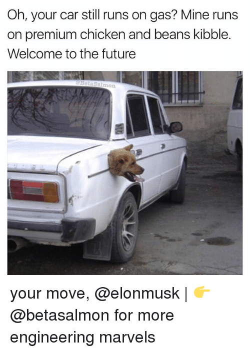 Your Moves: Oh, your car still runs on gas? Mine runs  on premium chicken and beans kibble.  Welcome to the future  Salmon your move, @elonmusk | 👉 @betasalmon for more engineering marvels