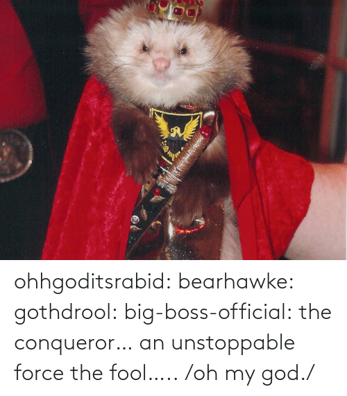 boss: ohhgoditsrabid: bearhawke:  gothdrool:  big-boss-official:  the conqueror… an unstoppable force   the fool…..                           /oh my god./