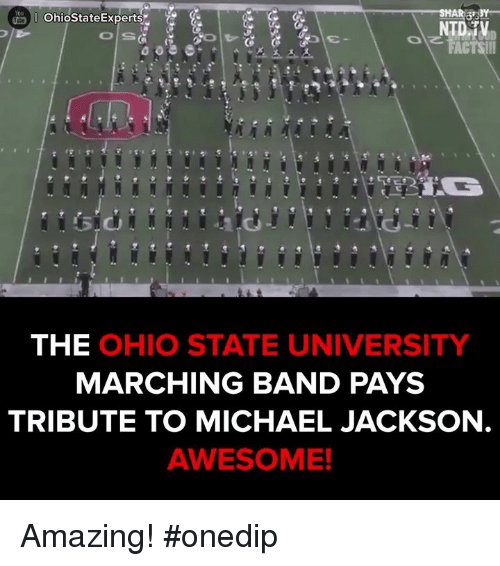 Tribution: Ohio StateExperts  NTD TV  THE  OHIO STATE UNIVERSITY  MARCHING BAND PAYS  TRIBUTE TO MICHAEL JACKSON  AWESOME! Amazing!  #onedip