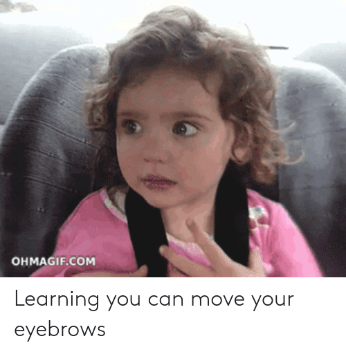 Ohmagif: OHMAGIF.COM Learning you can move your eyebrows