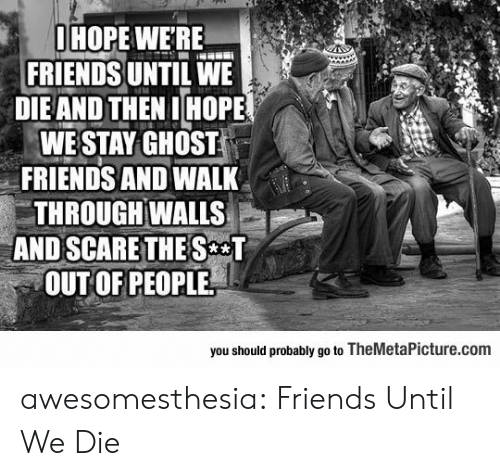 Friends, Scare, and Tumblr: OHOPE WERE  FRIENDS UNTIL WE  DIEAND THEN IHOPE  WE STAY GHOST  FRIENDS AND WALK  THROUGH WALLS  AND SCARE THE S T  OUT OF PEOPLE  you should probably go to TheMetalPicture.com awesomesthesia:  Friends Until We Die
