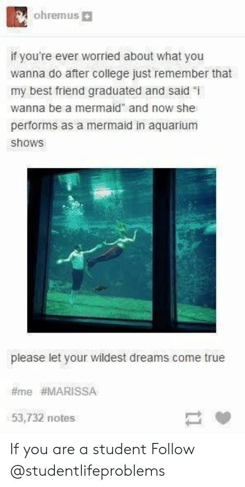 "Best Friend, College, and True: ohremus  if you're ever worried about what you  wanna do after college just remember that  my best friend graduated and said ""i  wanna be a mermaid"" and now she  performs as a mermaid in aquarium  shows  please let your wildest dreams come true  #me #MARISSA  53,732 notes If you are a student Follow @studentlifeproblems​"
