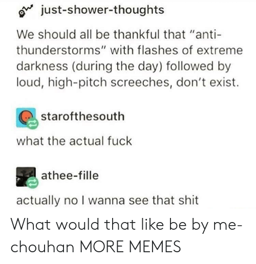 "Dank, Memes, and Shit: Ojust-shower-thoughts  We should all be thankful that ""anti  thunderstorms"" with flashes of extreme  darkness (during the day) followed by  loud, high-pitch screeches, don't exist.  starofthesouth  what the actual fuck  athee-fille  actually no I wanna see that shit What would that like be by me-chouhan MORE MEMES"