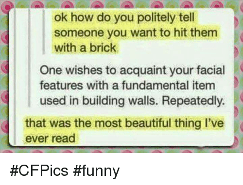 the most beautiful thing ive ever: ok how do you politely tell  someone you want to hit them  with a brick  One wishes to acquaint your facial  features with a fundamental item  used in building walls. Repeatedly.  that was the most beautiful thing I've  ever read #CFPics #funny