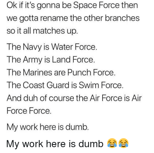 Dumb, Work, and Army: Ok if it's gonna be Space Force then  we gotta rename the other branches  so it all matches up.  The Navy is Water Force.  T he Army is Land Force  The Marines are Punch Force.  The Coast Guard is Swim Force  And duh of course the Air Force is Air  Force Force.  My work here is dumb My work here is dumb 😂😂