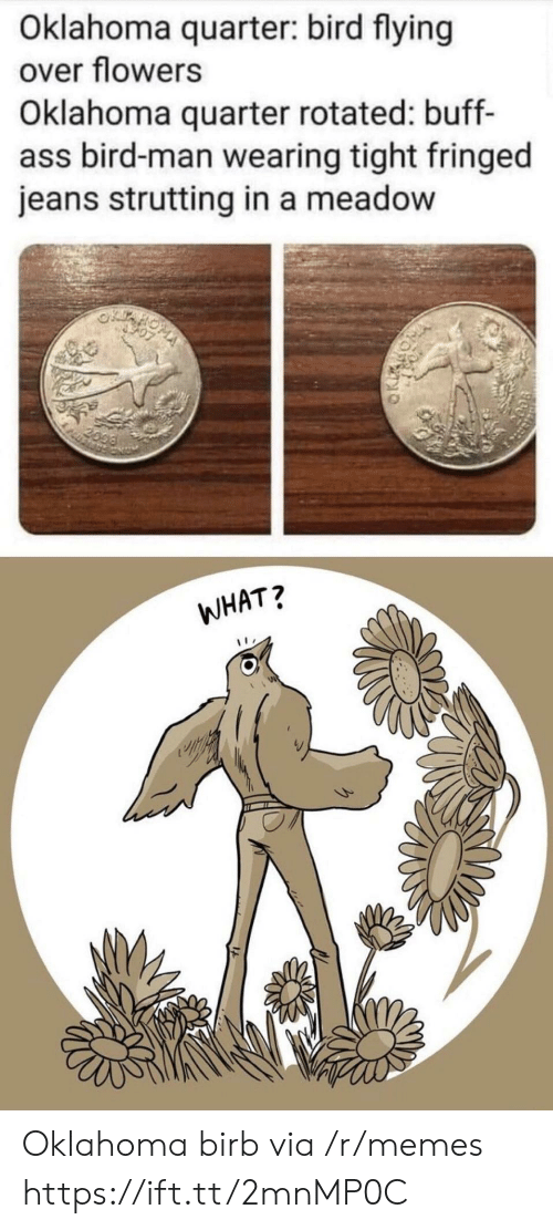 birb: Oklahoma quarter: bird flying  over flowers  Oklahoma quarter rotated: buff-  ass bird-man wearing tight fringed  jeans strutting in a meadow  2099  WHAT? Oklahoma birb via /r/memes https://ift.tt/2mnMP0C