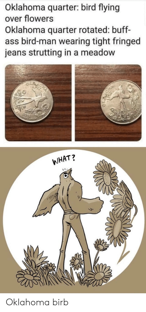 birb: Oklahoma quarter: bird flying  over flowers  Oklahoma quarter rotated: buff-  ass bird-man wearing tight fringed  jeans strutting in a meadow  2099  WHAT? Oklahoma birb