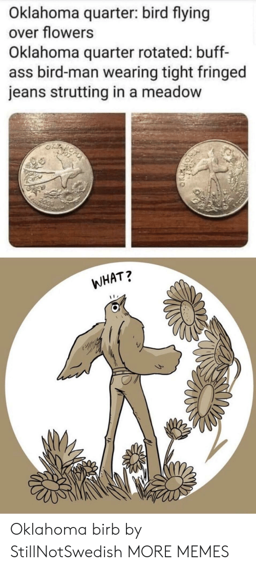 birb: Oklahoma quarter: bird flying  over flowers  Oklahoma quarter rotated: buff-  ass bird-man wearing tight fringed  jeans strutting in a meadow  2099  WHAT? Oklahoma birb by StillNotSwedish MORE MEMES