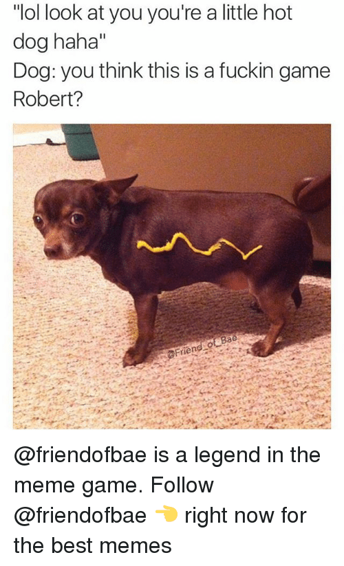 "Meme Game: ""ol look at you you're a little hot  dog haha""  Dog: you think this is a fuckin game  Robert? @friendofbae is a legend in the meme game. Follow @friendofbae 👈 right now for the best memes"