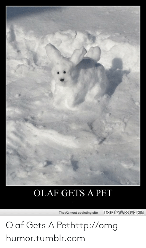 Taste Of Awesome: OLAF GETS A PET  TASTE OF AWESOME.COM  The #2 most addicting site Olaf Gets A Pethttp://omg-humor.tumblr.com