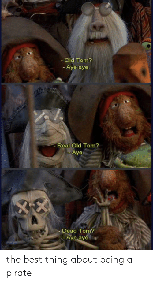 Real Old: Old Tom?  - Aye aye.  -Real Old Tom?  -Aye.  Dead Tom?  Aye aye the best thing about being a pirate