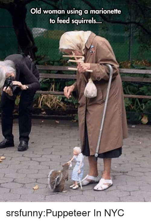 Old woman: Old woman using a marionette  to feed squirrels... srsfunny:Puppeteer In NYC