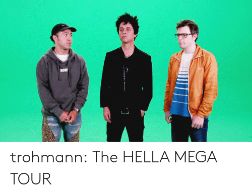 Tumblr, youtube.com, and Blog: OM trohmann:  The HELLA MEGA TOUR
