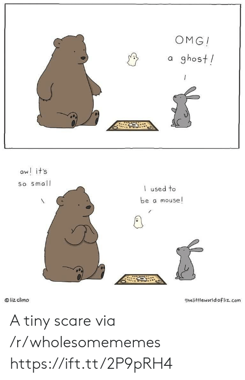 Liz Climo: OMG!  a ghost!  aw! it's  So small  used to  be a mouse!  liz climo  thelittleworld ofliz.com A tiny scare via /r/wholesomememes https://ift.tt/2P9pRH4