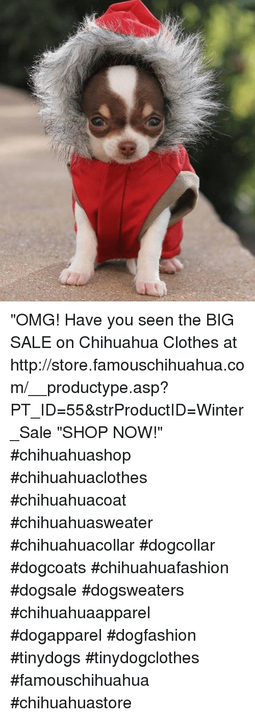 "Chihuahua, Memes, and 🤖: ""OMG! Have you seen the BIG SALE on Chihuahua Clothes at http://store.famouschihuahua.com/__productype.asp?PT_ID=55&strProductID=Winter_Sale ""SHOP NOW!"" #chihuahuashop #chihuahuaclothes #chihuahuacoat #chihuahuasweater #chihuahuacollar #dogcollar #dogcoats #chihuahuafashion #dogsale #dogsweaters #chihuahuaapparel #dogapparel #dogfashion #tinydogs #tinydogclothes #famouschihuahua #chihuahuastore"