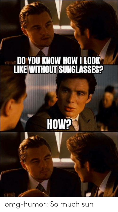 humor: omg-humor:  So much sun