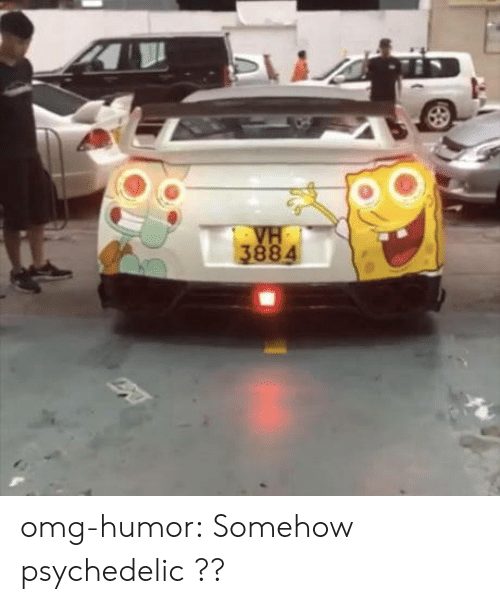 Omg, Tumblr, and Blog: omg-humor:  Somehow psychedelic ??