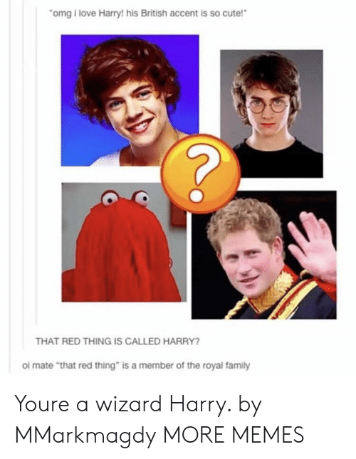"Cute, Dank, and Family: omg i love Harry! his British accent is so cute!  THAT RED THING IS CALLED HARRY?  ol mate ""that red thing"" is a member of the royal family Youre a wizard Harry. by MMarkmagdy MORE MEMES"