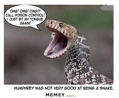poison control: OMG! OMG! OMG!!!  CALL POISON CONTROL!  I JUST BIT MY TONGUE  AGAIN!  HUMPHREY WAS NOT VERY GOOD AT BEING A SNAKE  MEMEY.com