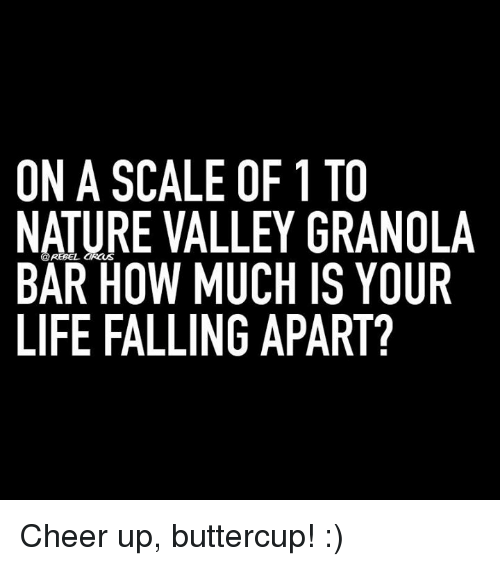 On A Scale Of 1 To Nature Valley Granola Rebel Bar How Much Is Your
