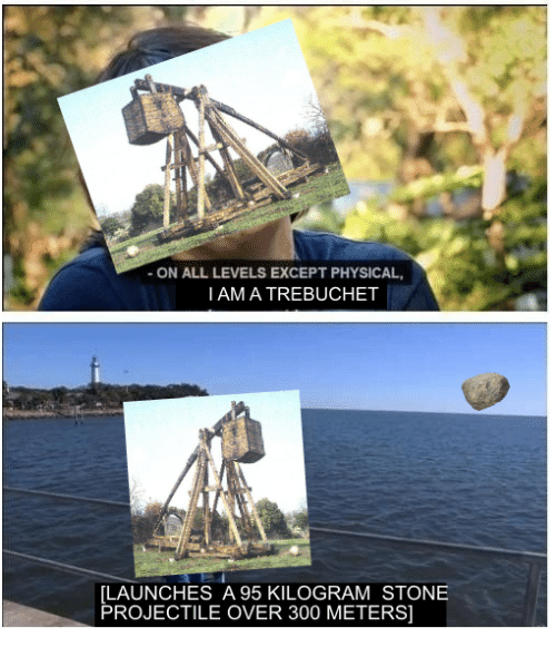 trebuchets: ON ALL LEVELS EXCEPT PHYSICAL,  I AM A TREBUCHET  LAUNCHES A 95 KILOGRAM STONE  PROJECTILE OVER 300 METERS]