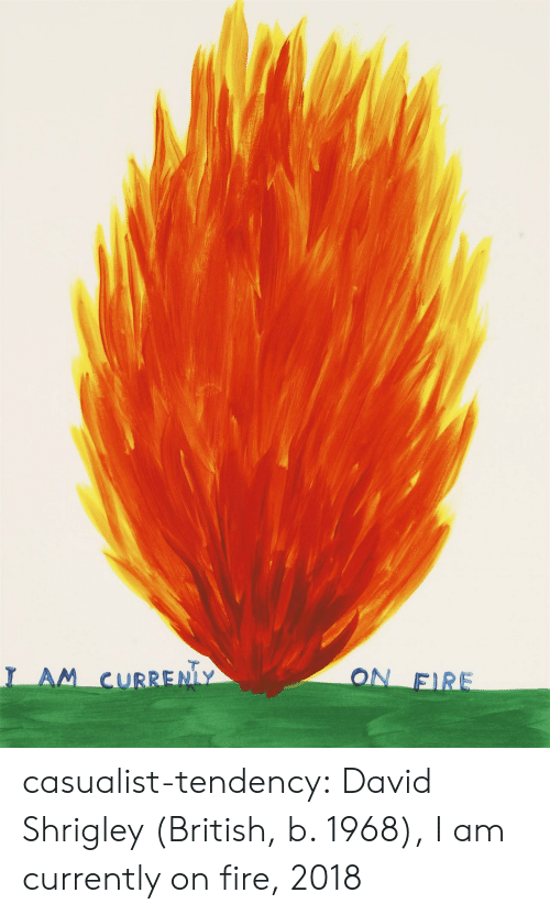 Fire, Tumblr, and Blog: ON FIRE  I AM CURRENLY casualist-tendency:  David Shrigley (British, b. 1968), I am currently on fire, 2018