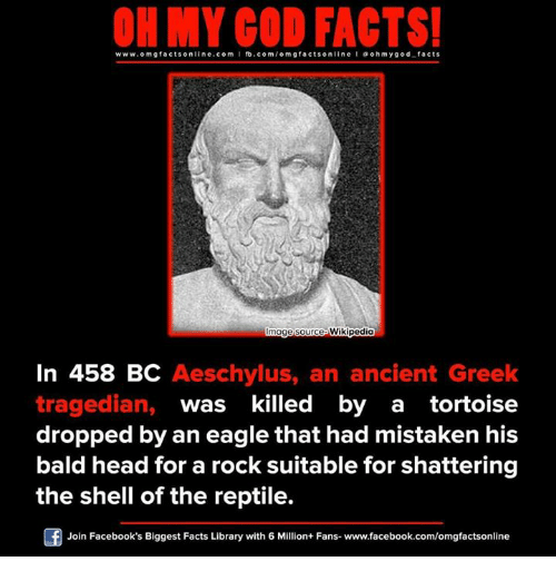 Bald Headed: ON MY GOD FACTS!  www.omg facts online.com I fb.com  g facts online I o oh y god facts  Innage source  Wikipedi  In 458 BC Aeschylus, an ancient Greek  tragedian  was killed by a tortoise  dropped by an eagle that had mistaken his  bald head for a rock suitable for shattering  the shell of the reptile.  Join Facebook's Biggest Facts Library with 6 Million+ Fans- www.facebook.com/omgfactsonline