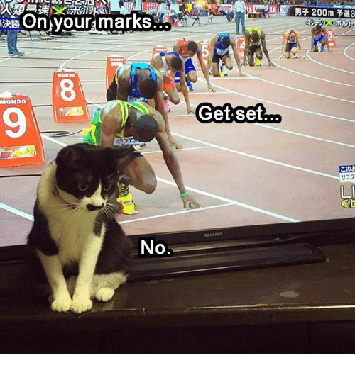 on your mark: On your marks  MONDO  No  Get set  200m  LI