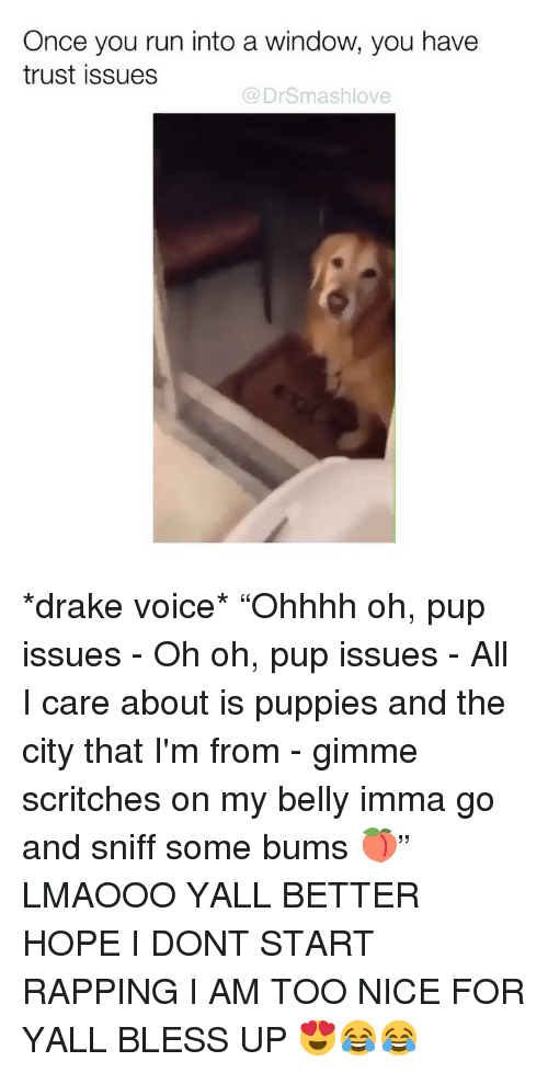"""Dont Start: Once you run into a window, you have  trust issues  @ DrSmashlove *drake voice* """"Ohhhh oh, pup issues - Oh oh, pup issues - All I care about is puppies and the city that I'm from - gimme scritches on my belly imma go and sniff some bums 🍑"""" LMAOOO YALL BETTER HOPE I DONT START RAPPING I AM TOO NICE FOR YALL BLESS UP 😍😂😂"""