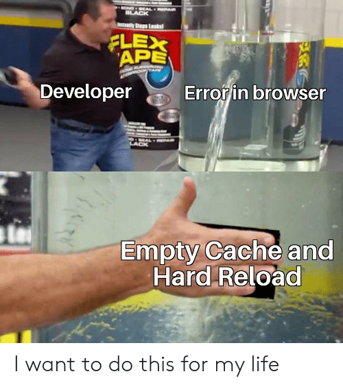 Flexing, Life, and Cache: OND EAL EPAR  ILACK  tay Ss Lsk  FLEX  APE  Error in browser  Developer  POEAL AR  LACK  Empty Cache and  Hard Reload I want to do this for my life