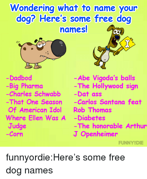 American Idol, Arthur, and Ass: ondering what to name your  dog? Here's some free dog  names!  0  Dadbod  -Big Pharma  Charles Schwabb -Dat ass  That One Season -Carlos Santana feat  Of American Idol Rob Thomas  Where Ellen Was A -Diabetes  Judge  -Corn  -Abe Vigoda's balls  The Hollywood sign  The honorable Arthur  J Openheimer  FUNNYODIE funnyordie:Here's some free dog names