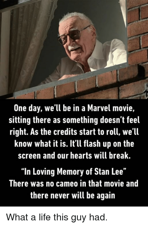 "Dank, Life, and Stan: One day, we'll be in a Marvel movie,  sitting there as something doesn t feel  right. As the credits start to roll, we'll  know what it is. Itll flash up on the  screen and our hearts will break  ""In Loving Memory of Stan Lee""  There was no cameo in that movie and  there never will be again What a life this guy had."