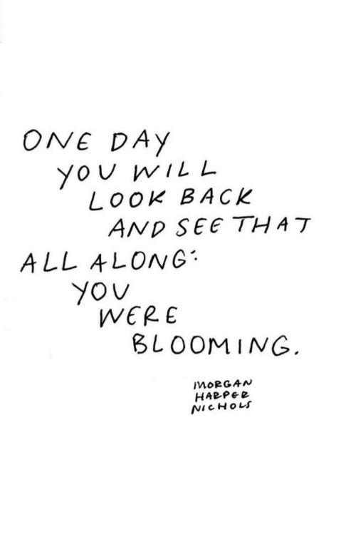 Yo, Back, and One: ONE DAy  Yo U wILL  Look BACK  ALL ALONG  WERE  BLOOMING  MORGAN  HABPe e