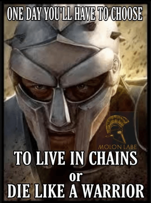 Liked A: ONE DAY YOULL HAVE TO CHOOSE  MOLON LABE  TO LIVE IN CHAINS  or  DIE LIKE A WARRIOR