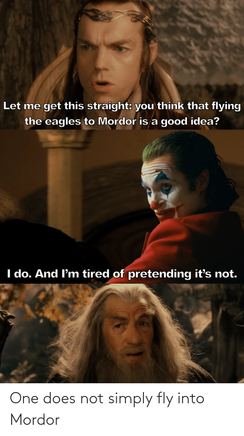 fly: One does not simply fly into Mordor
