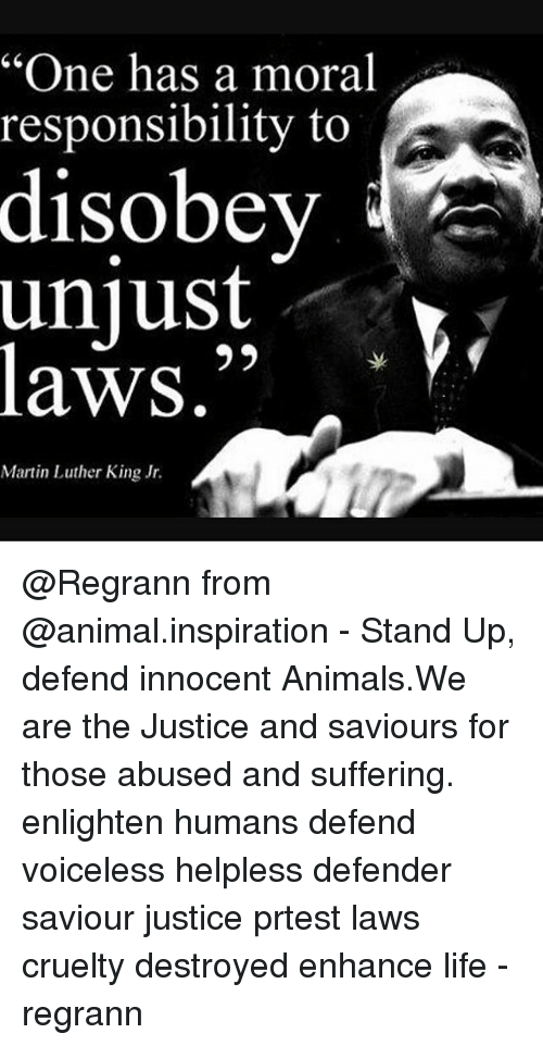 martin luther king and unjust laws King continued, one has not only a legal but a moral responsibility to obey just laws, but conversely, one has a moral responsibility to disobey unjust laws so far, so good most of us can follow king's reasoning to this point.