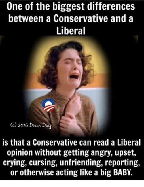 dag: One of the biggest differences  between a Conservative and a  Liberal  2016 Dine Dag  is that a Conservative can read a Liberal  opinion without getting angry, upset,  crying, cursing, unfriending, reporting,  or otherwise acting like a big BABY.