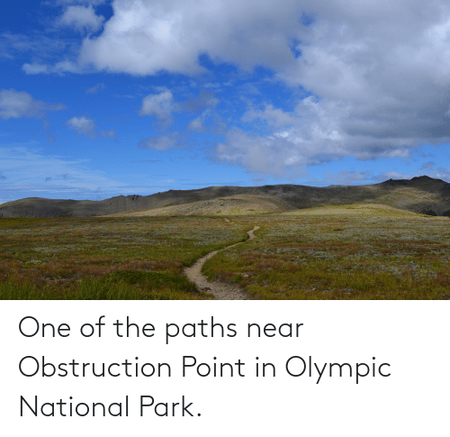 olympic: One of the paths near Obstruction Point in Olympic National Park.