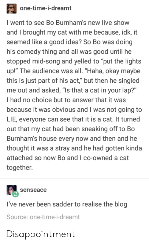 "Blog, Good, and House: one-time-i-dreamt  went to see Bo Burnham's new live show  and I brought my cat with me because, idk, it  seemed like a good idea? So Bo was doing  his comedy thing and all was good until he  stopped mid-song and yelled to ""put the lights  up!"" The audience was all. ""Haha, okay maybe  this is just part of his act,"" but then he singled  me out and asked, ""Is that a cat in your lap?""  I had no choice but to answer that it was  because it was obvious and I was not going to  LIE, everyone can see that it is a cat. It turned  out that my cat had been sneaking off to Bo  Burnham's house every now and then and he  thought it was a stray and he had gotten kinda  attached so now Bo and I co-owned a cat  together.  senseace  I've never been sadder to realise the blog  Source: one-time-i-dreamt Disappointment"