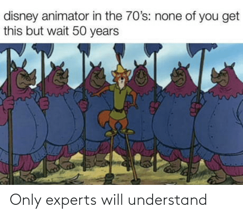 understand: Only experts will understand