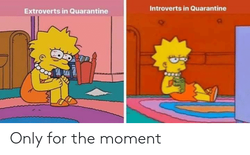 moment: Only for the moment