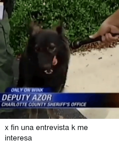 Charlotte, Office, and Wink: ONLY ON WINK  DEPUTY AZOR  CHARLOTTE COUNTY SHERIFF'S OFFICE x fin una entrevista k me interesa