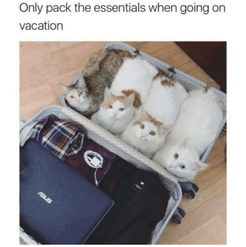 essentials: Only pack the essentials when going on  vacation