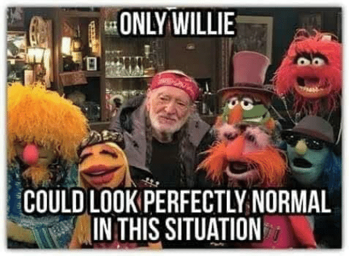 willie: ONLY WILLIE  COULD LOOK PERFECTLY NORMAL  IN THIS SITUATION