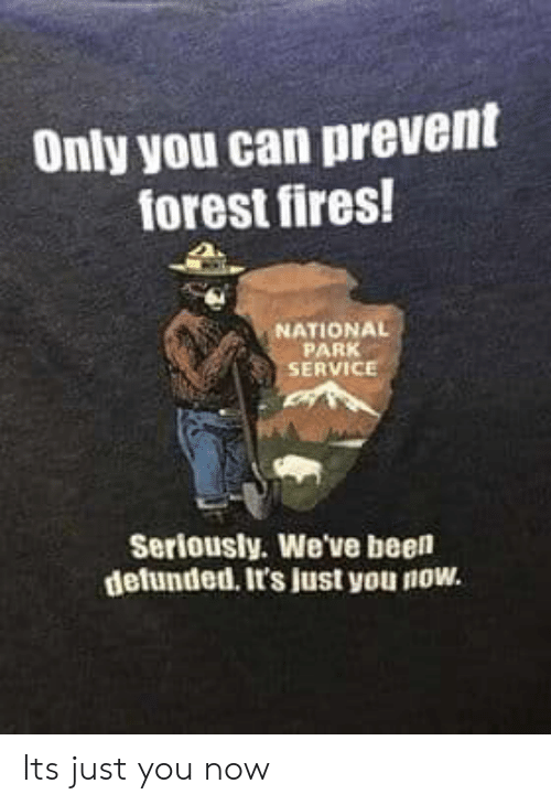 Been, Forest, and Can: Only you can prevent  forest fires!  NATIONAL  PARK  SERVICE  Seriously. We've been  defunded. It's just you now. Its just you now